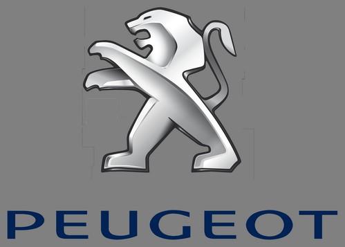 Peugeot500